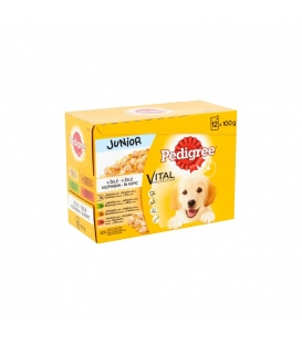 PEDIGREE JUNIOR kapsička v želé 12x100g