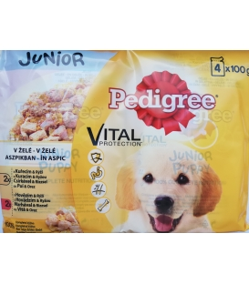 PEDIGREE JUNIOR kapsička v želé 4x100g