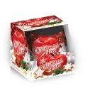 VONNÁ SVIEČKA - Christmas spices